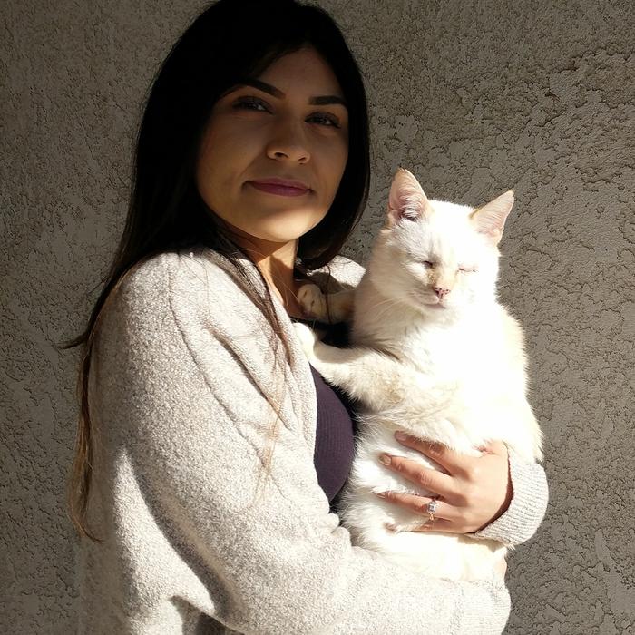 Miranda  photo